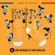 TRAIL ULTRA orange socks - Collector DBDB | Made in France